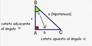 elementos y notacion triángulo rectangulo