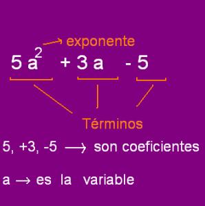 polinomio de una variable