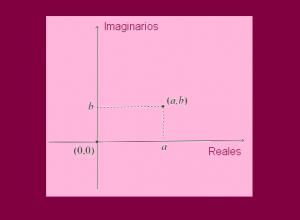 numeros complejos1